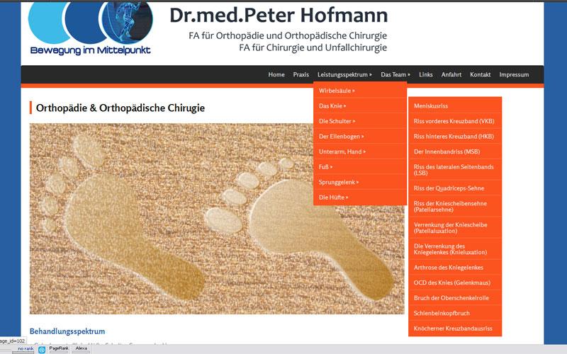 styrolart print- und webdesign - website dr hofmann