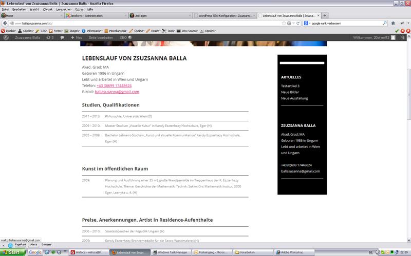 styrolart print- und webdesign - Zsuzsanna Balla Künstlerwebsite, CMS Wordpress inkl. SEO Grundbasis